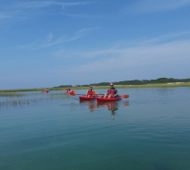 Guided kayaking on Cape Cod
