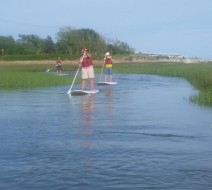 Paddleboard tours Cape Cod
