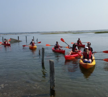 Where to kayak on Cape Cod