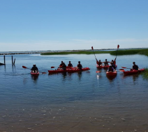 Kayak in Ptown