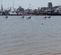 Paddle board yoga Cape Cod