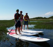 Provincetown paddle board rental