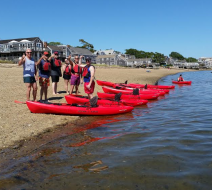 Guided kayaking Provincetown
